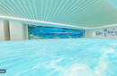 珠海儿童游泳馆哪家比较好珠海知名儿童游泳馆珠海市比较好的儿童游泳馆图片