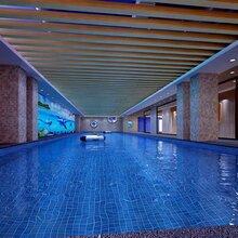珠海亲子游泳哪家正规珠海市儿童游泳馆那家好珠海儿童游泳培训找哪家
