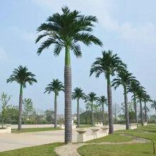 东莞仿真椰子树