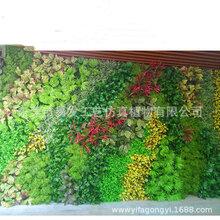 广州仿真绿植景观仿真植物品种齐全