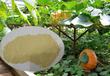 蘇州農用多肽酶解氨基酸