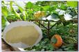 麗水農用多肽酶解氨基酸供貨商