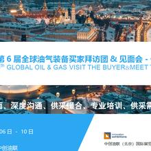 2020年第6届俄罗斯油气买家见面会&见面会