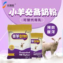 羔羊养殖技术及喂养小羊时喝的奶粉代乳粉