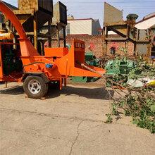 郑州大型综合破碎机促进木材行业节能环保新发展图片