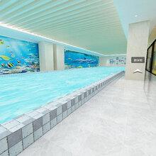 珠海儿童游泳馆收费珠海儿童游泳馆那个好珠海亲子儿童游泳教育培训