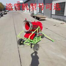 現貨供應自走式造雪機全自動造雪機人工造雪機圖片