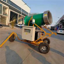 定制规格人工造雪机全自动造雪机雪景制造机图片