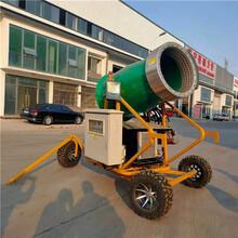 現貨供應60X雪景制造機全自動造雪機大型制雪機圖片