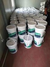 成都環氧樹脂修補砂漿生產廠家圖片