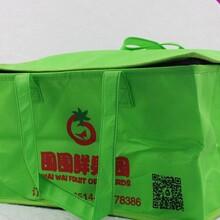 厂家订做冰袋、可折叠、可保温、无纺布冰袋、保温箱、冰包