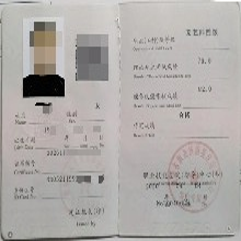 人社人保高级茶艺师证图片