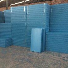 安徽专业生产挤塑板报价