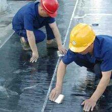 重庆专业生产sbs沥青防水卷材