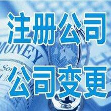 香港公司第一次审计报税的时间每年必须办理年审年检