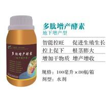 黑龙江省让赤芍膨大增产的好办法用地下型多肽增产酵素安全无公害图片