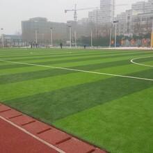 北京优游平台1.0娱乐注册地坪安全可靠图片