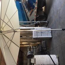 禪城中柱傘