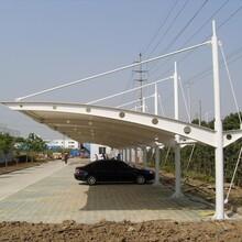 榆林膜结构停车棚供应商图片