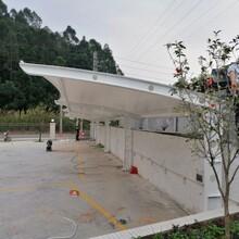 江陰膜結構停車棚供貨商
