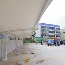渭南膜结构停车棚供应商图片