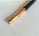 KVVP2-22屏蔽鎧裝控制電纜天聯線纜廠家直銷