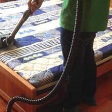 莞城专业从事床垫清洗除螨行业领先图片