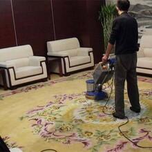 莞城专业从事清洗地毯优质服务图片