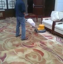 东城专业从事清洗地毯报价图片