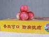 六盘水苹果批发
