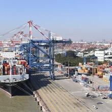 启东专业承接码头装卸货物运输电话哪家比较好图片