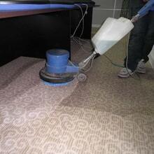 增城区宾馆地毯清洗地毯保洁图片