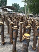 北京专业从事仿树皮护栏施工图片