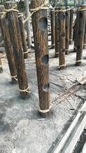 江西专业从事仿树皮护栏安装价格施工报价图片
