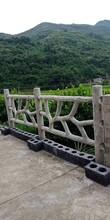 大连仿树藤护栏施工工程图片