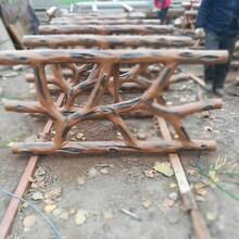 黑龙江专业承接仿树藤护栏安装价格施工报价图片