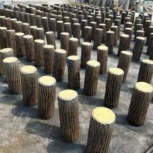 贵州专业从事仿树桩五联排图片