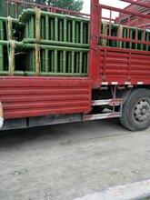 山东专业从事仿竹护栏哪里有施工价格