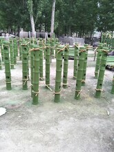 沈阳仿竹护栏施工工程图片