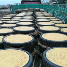 海南垃圾桶花箱工程施工价格图片