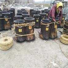 哈尔滨垃圾桶花箱价格图片