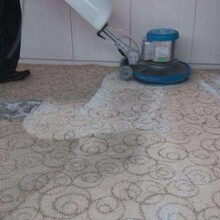 南京玄武区从事地毯清洗服务图片