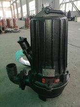 江西专业生产潜水排污泵厂家价格排污泵厂家直销