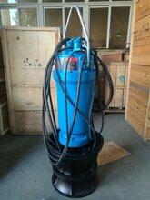 山东ZQB潜水轴流泵厂家价格潜水混流泵