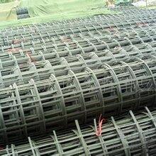 山东钢塑格栅生产厂家