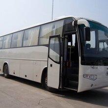 北京包车服务
