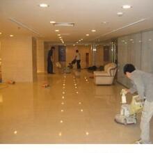 乌镇专业从事石材养护公司正规公司图片