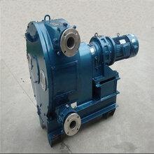自治區林芝地區蠕動泵軟管內徑特點圖片