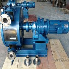 乌鲁木齐市工业软管泵产品特征图片