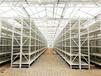 陜西西安鼎立信倉儲設備、輕中重層板貨架,橫梁式貨架、廠家可定制專業貨架